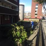 community garden 5
